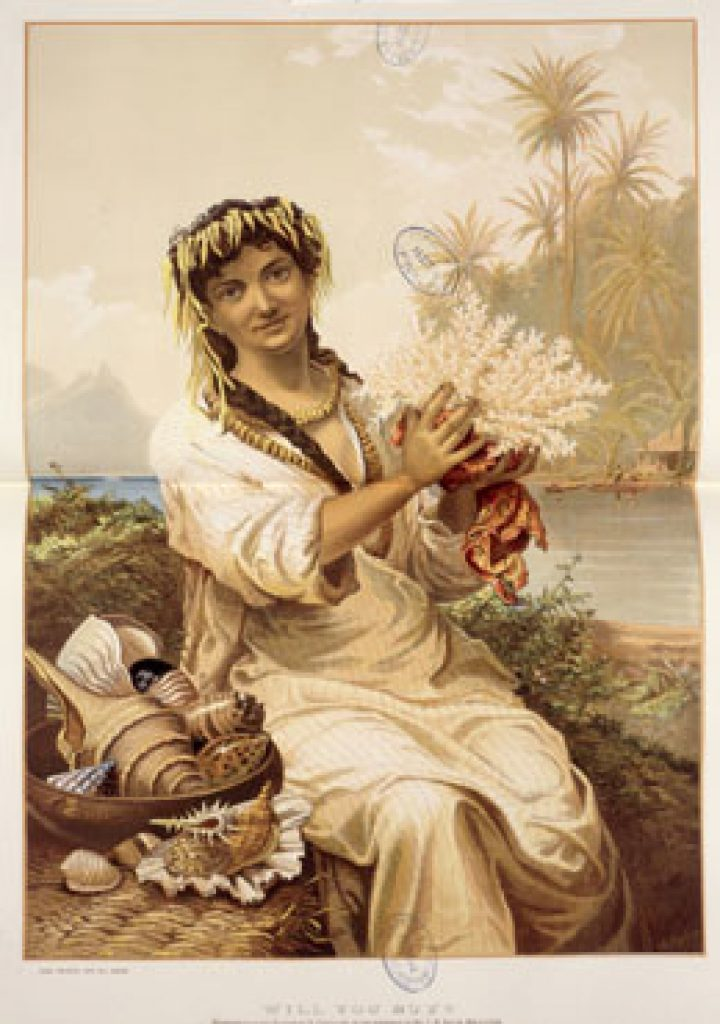 "Affichette australienne ""Will you buy ?"" (1883)"